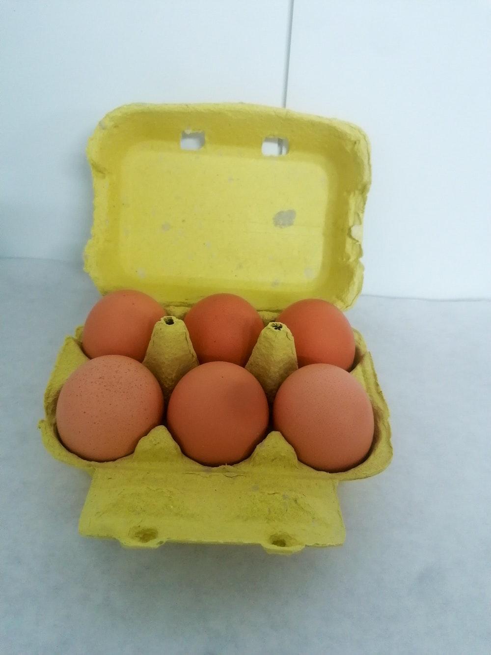 verse eieren - 6 stuks Large